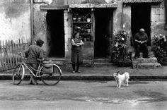 **SIGNED** - Erwitt - FRANCE. Loire Valley. 1972. (FOR JASON)