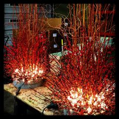 Love this look for fall to Christmas. Detroit Garden Works