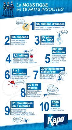 Infographie : 10 faits insolites sur les moustiques - Insecticides Kapo