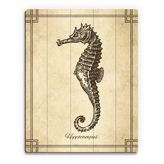 Horizon Vintage Seahorse Zoology Wood Wall Art