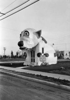 How fantastic is this: the Pup Cafe, a Venice, California hot dog stand in the shape of a dog with curbside service. Unusual Buildings, Interesting Buildings, Old Photos, Vintage Photos, Vintage Signs, Fosse Commune, Vintage Restaurant, Dog Restaurant, Hot Dog Stand