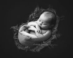 Newborn photography one on one mentoring sessions