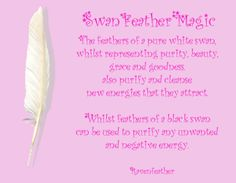 My Original Version of Swan Feather Magic *Please check your local and federal guidelines for feather collection and possession! Pagan Witch, Wiccan, Witchcraft, Witches, Animal Spirit Guides, Spirit Animal, Feather Meaning, Feather Symbolism, Death Note