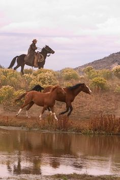 Yeah, lots of work on a ranch.....there is Rusty our Wrangler herding those two renegades back to pasture...