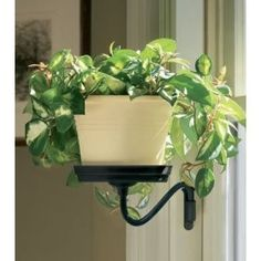 plant sconce black so my cats dont eat my plants Indoor Garden, Garden Plants, Indoor Plants, Outdoor Gardens, Dream Garden, Home And Garden, Inside Plants, Small Patio, Hanging Plants