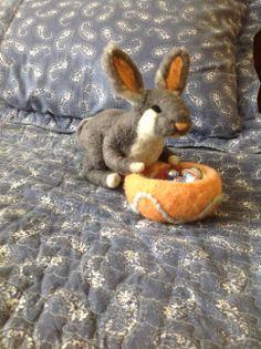 Rabbit felt