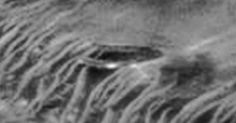 The surface of Mars is starting to look like a flying saucer junkyard as yet another dish-shaped craft has been spotted in an image taken by the Mars Orbiter Camera. Are aliens crashing their spacecrafts …