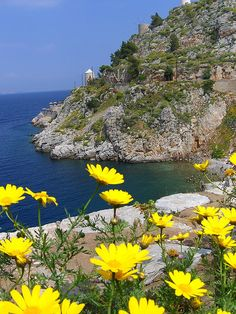 """Hydra Island -  """"These trees don't take comfort in less sky  These rocks don't take comfort under foreigners'  Footsteps  These faces don't' take comfort but only  In the sun  These hearts don't take comfort except in justice """" ~Yiannis Ritsos"""