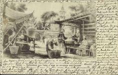 Artist Postcard China, Nutrition des Vers a soie et division des cocons, Seidengewinnung, Kokons. Postally used 1904.