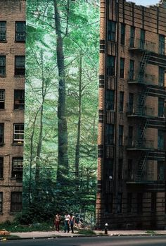 Mural of a forest in the south Bronx NYC. Inserted a large image of a foreest contrasts with and highlights the urban area surrounding it. RCL