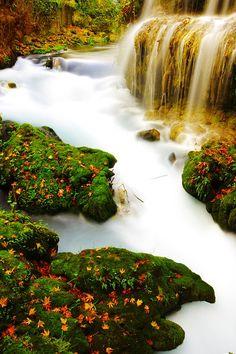 Photo By Engin_Akyurt | Pixabay   #waterfall #water #white #photographylovers #photographyislifee #photographyeveryday #photographyislife #photographysouls