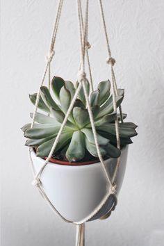 diy suspension macram pour plante moodfeather blog blog moodfeather pinterest merci. Black Bedroom Furniture Sets. Home Design Ideas