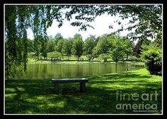 Lake In Forest Lawn Cemetery Buffalo Ny:    Beautiful and serene lake at Forest Lawn Cemetery in Buffalo, New York. The Fine Art America watermark will not be on your purchased product. Prices start at $4.30