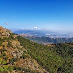 Come la fatica della salita in mezzo al bosco viene ripagata appena sbuchi vicino alla cima.  #escursione #santumiali #villacidro #montelinas #montimannu #sardegna #sardinia #italia #italy #escursionismo #trekking #hiking #hike #panorama #landscape #skyporn #sky #montagna #mountain #outdoor #wilderness #natura #nature #sentiero #sardegnaselvaggia #wildsardinia #veganhiker #vegantrekker #vegantraveller #veganbackpacker