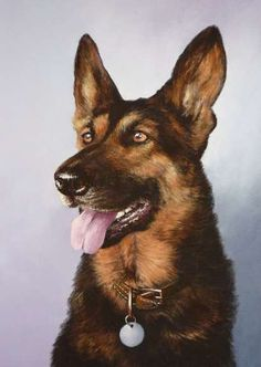 German Shepherd Portrait by Mark Whittaker on ARTwanted