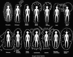 Energetic Defense Systems, Light Emerging (1993) by Barbara Ann Brennan. The human energy field is the manifestation of Universal Energy that is intimately involved with human life. It can be described as a luminous body that surrounds the physical body.