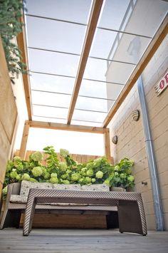 Roof Deck | Planters | Outdoor Furniture | Birch Trees | Urban | Landscape | Design | Garden