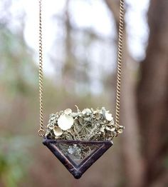 Nature Walk Terrarium Necklace by Copper  Torch on Scoutmob Shoppe