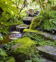 Landscape architect Brooks Kolb designed, and Turnstone Construction installed, a shady watercourse with mossy boulders and granite bridges on a richly historic Finn Hill property, home of Debra Dahlen, Bob Fries and their three children.