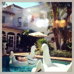 Luxe Report: Poolside Sunbathing