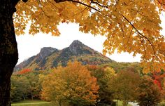This photo provided by Grandfather Mountain shows the peaks of Grandfather Mountain awash with the colors of fall leaves in Linville, North Carolina., Friday, Oct. 10, 2008.