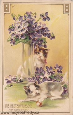 Two cats playing with nut and violets vintage postcard