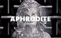 Aphrodite, X Men, Owl, Bird, Animals, Animales, Animaux, Owls, Birds