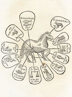 Zodiakpaard (Obras de Albeyteria…), Martín Arredondo, 1704