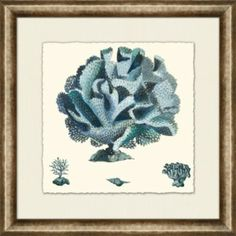 Accessories, Blue Coral Framed Art III, Accessories | Havertys Furniture