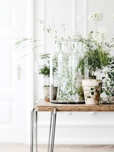 Collections of vessels/vases with plants and some simple floral details for either the window sills/buffet table or one end of bar