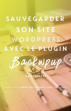 Sauvegarder son site est une chose essentielle lorsqu'on tient à son blog. On est jamais à l'abris d'un hack. Sur WordPress il existe de nombreuses solutions. En voici une.
