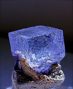 A clear gemmy blue Fluorite crystal on matrix from a mine in Russia, it's about the size of a sugar cube.