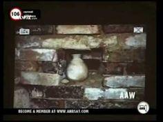 The Treasure of Nimrud - Part 1 / 3