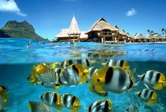 Might be going here in March! *Bora Bora*