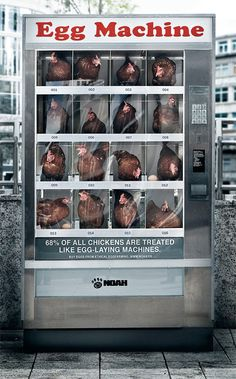 #advertising – great idea, but it should've been a poster instead of real chickens being caged.
