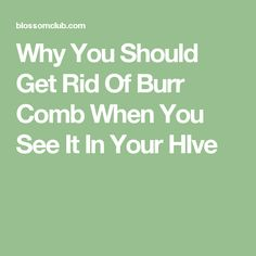 Why You Should Get Rid Of Burr Comb When You See It In Your HIve