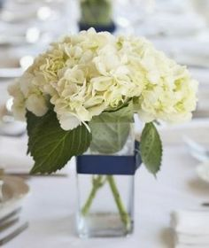 Centerpieces.  Blue, green, white or pink hydrangea with a coordinated ribbon or gem accent on vase. Simple yet again elegant..