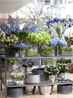 Pulbrook and Gould Blue flower display