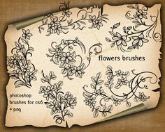 flowers brushes for photoshop + PNG files free use and modification, for any purpose. Photoshop Brushes, Stencils, Floral, Flowers, Vectors, Design, Shirt, Florals, Dress Shirt