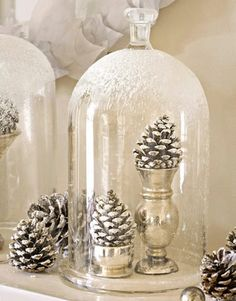 "simple and so beautiful ""snowy"" pine cones on silver under a cloche"