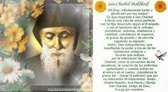 Oración poderosa a San Charbel para pedir un Milagro Oh Dios infinitamente Santo yGlorificado por tus Santos, tu queinspiraste al santo monje y ermitaño Cha