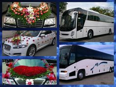 Are you willing to book luxury cars and buses services in Ghaziabad? O My Celebration helps you search for the recognized service providers in your area. Mercedes Bus, International Holidays, Anniversary Surprise, Wedding Expenses, Best Luxury Cars, Surprise Gifts, Volvo, Celebration, Search