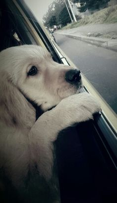 I wonder where we are going?