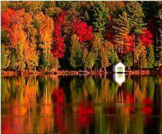 Autumn in Maine - need to see again. The PNW does not get colors like this...