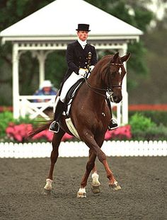 Isabell Werth, Gigolo. this horse is gorgeous!