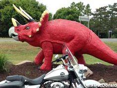 Elk River, MN - Dinosaur - Triceratops