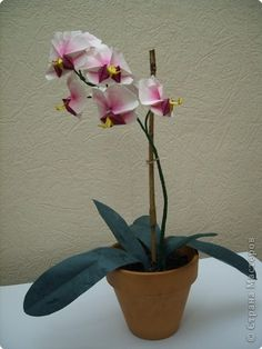 Master class Origami Orchid MK Photo Paper 82