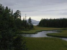 Panoramio - Photos by Sergei Korsun > White-Tersky