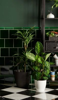 Victorian green tiles by Original Style Tiles. Perfect for a tropical garden room or conservatory, paired with lots of lush house plants. Botanical Interior, Tropical Interior, Low Maintenance Indoor Plants, Bathroom Plants, Bathroom Ideas, Style Tile, House Entrance, Color Tile, Green Tiles