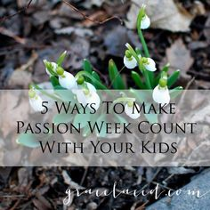 Next week is Passion Week..5 ways we can make the most of it to draw our kids' hearts to the glory of the Resurrection. || 5 Ways to Make Passion Week Count With Your Kids — gracelaced